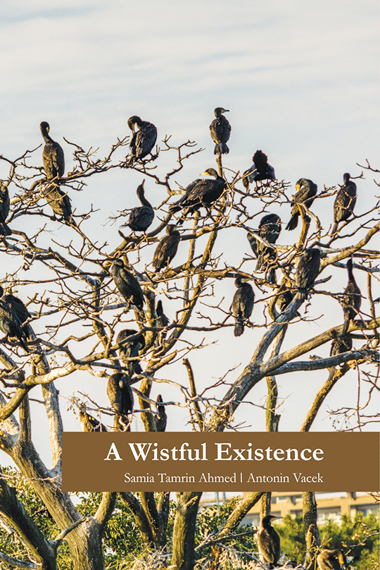 A Wistful Existence by Antonin Vacek and Samia Tamrin Ahmed